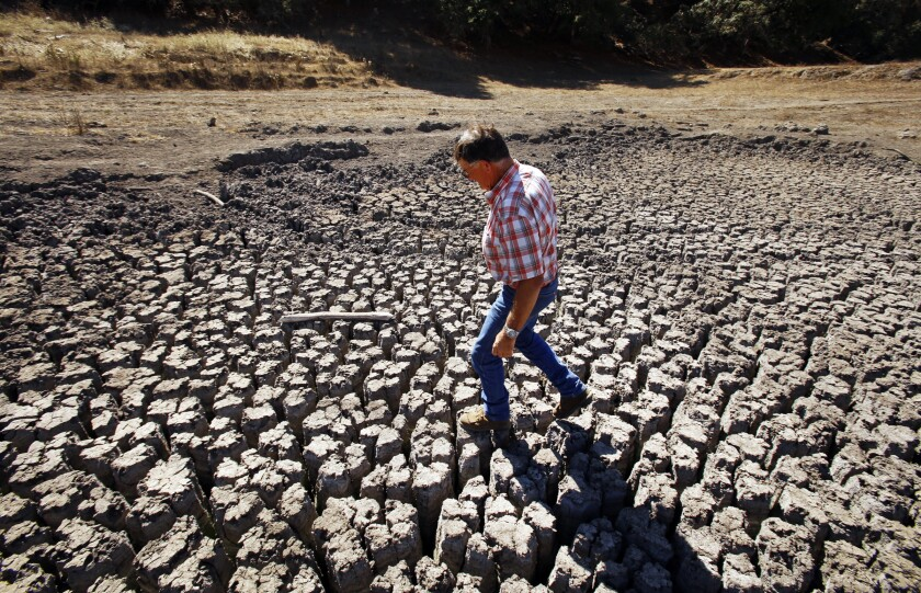 Rancher Jon Pedotti walks on the cracked remains of a parched lake bed of his  ranch in the foothills of Cambria.