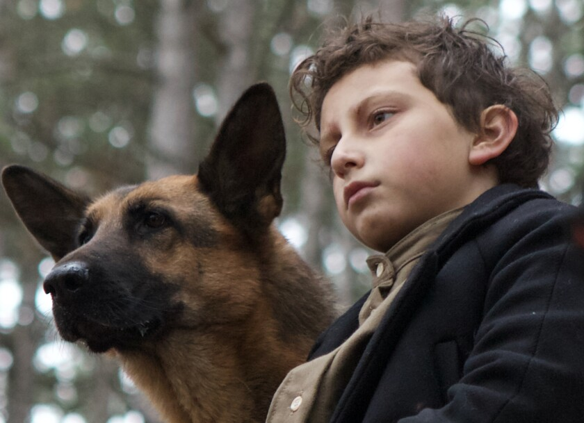 A German shepherd dog and a young boy sit side by side.
