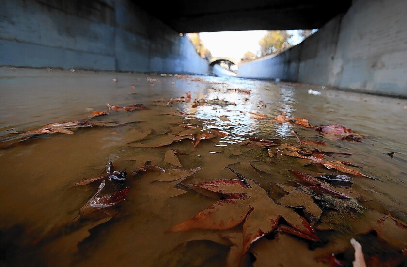 Leaves line the bed of the Arroyo Seco at its confluence with the Los Angeles River north of downtown Los Angeles, where the river is largely made of concrete.