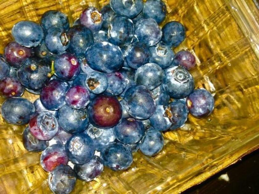 "Blueberries perfectly reflect the proverb; ""Good things come in small packages."" They make the list of top handful of healthy foods on the planet, and are good for everything from healing your psyche to repairing your sore muscles."