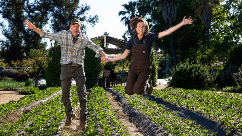 MOORPARK, CA-APRIL 18, 2019: John Chester and his wife Molly, founders of Apricot Lane Farms in Moo