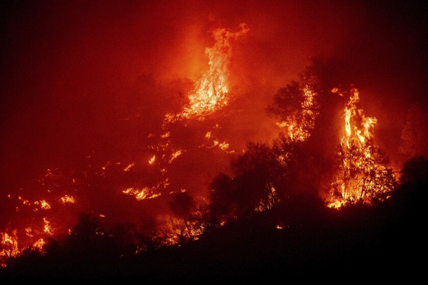 FILE - In this Tuesday, Sept. 14, 2021. file photo, Flames from the KNP Complex Fire burn a hillside above the Kaweah River in Sequoia National Park, Calif. Northern California wildfires may have killed hundreds of giant sequoias as they swept through groves of the majestic monarchs in the Sierra Nevada, an official said Wednesday. (AP Photo/Noah Berger, File)