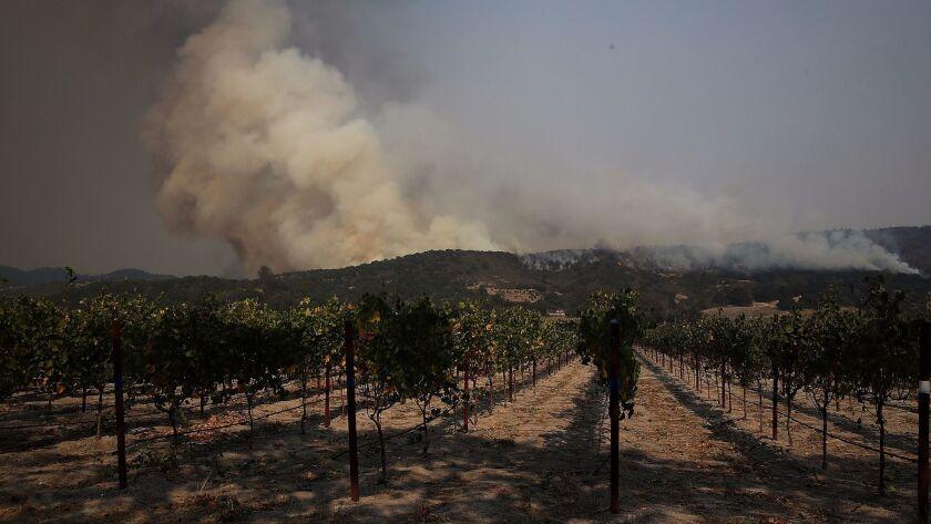A wildfire approaches Gundlach Bundschu Winery.