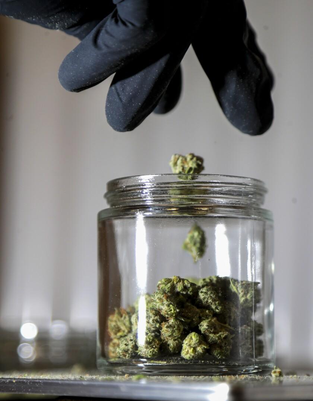 Un frasco con marihuana. Foto tomada el 22 de marzo del 2019 en Egg Harbor Township