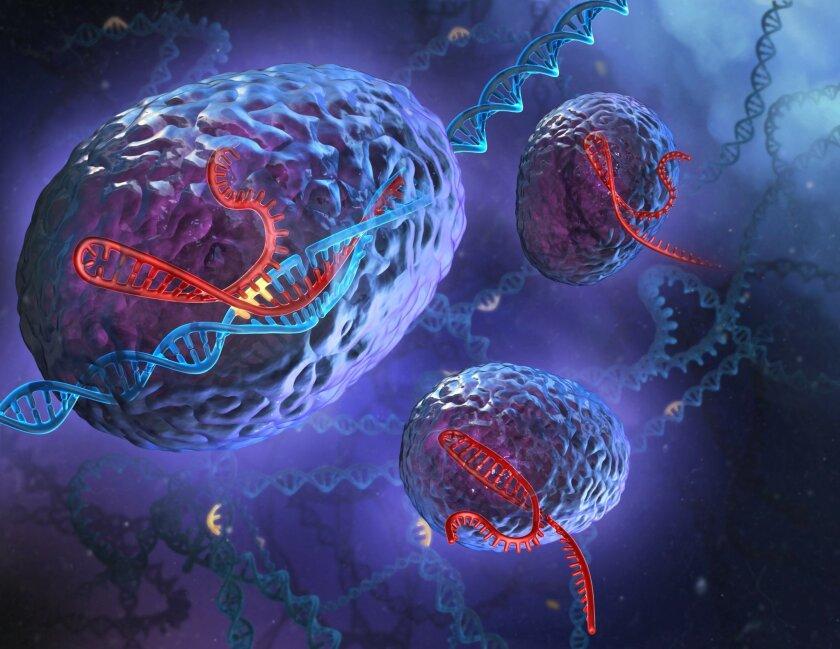 Artist's depiction of the CRISPR system in action.