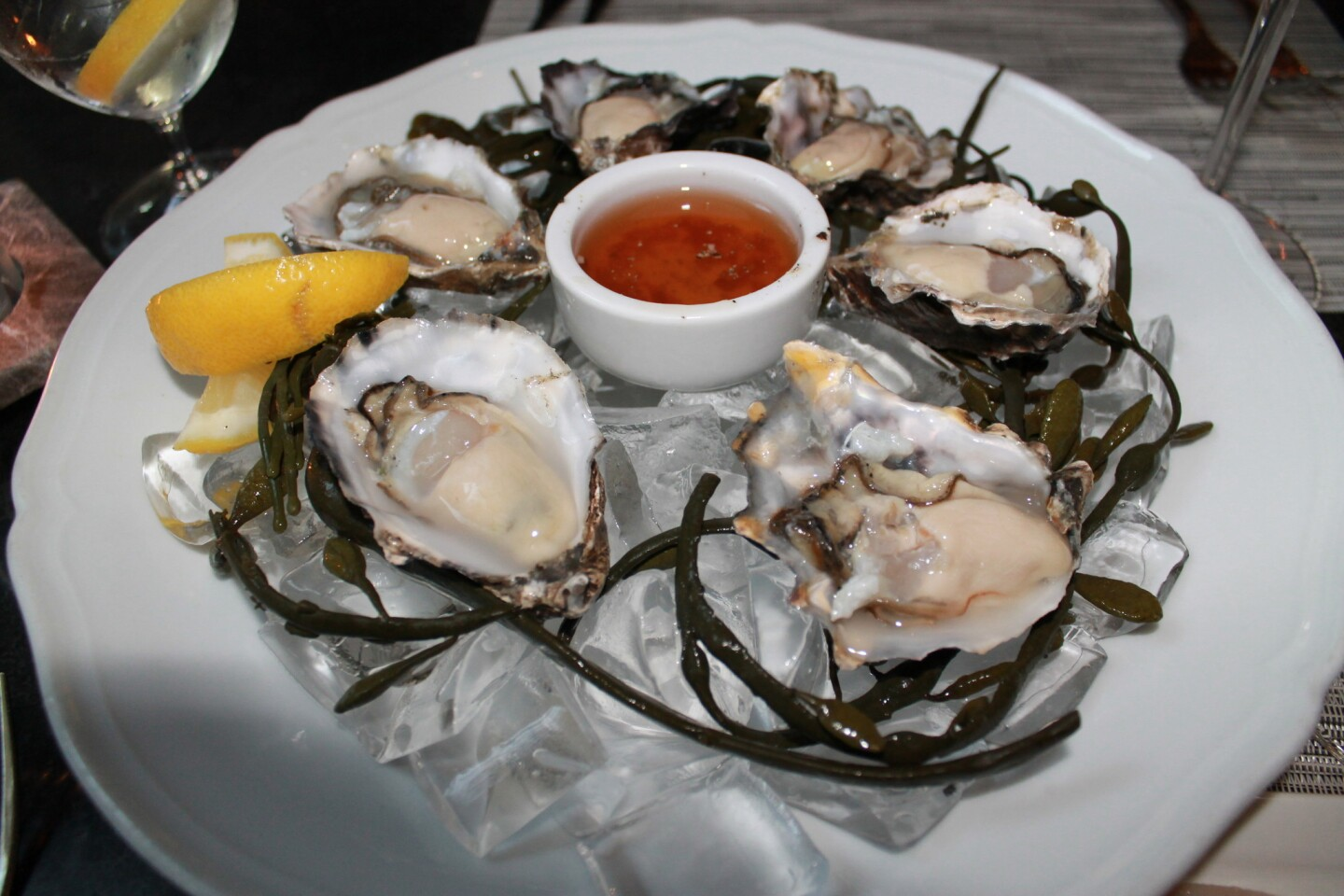 Oysters at Lucia Restaurant.