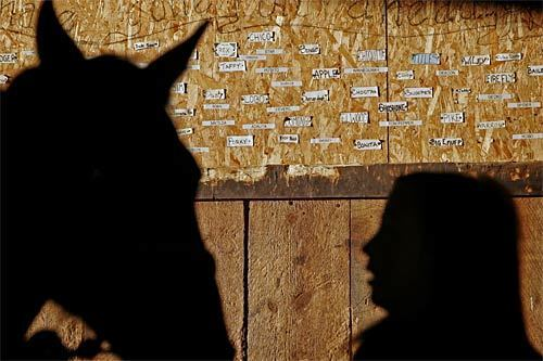 A horse and its visitor are silhouetted in a barn at Hunewill Guest Ranch on the outskirts of Bridgeport, Calif., about 360 miles north of Los Angeles. Founded in 1861, Hunewill is a working ranch that also seeks to offer guests an authentic cowboy experience – to wit, a dude ranch. Posted on the wall are the names of ranch horses that have passed away.
