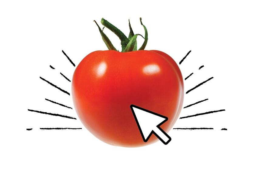 A beautiful ripe tomato