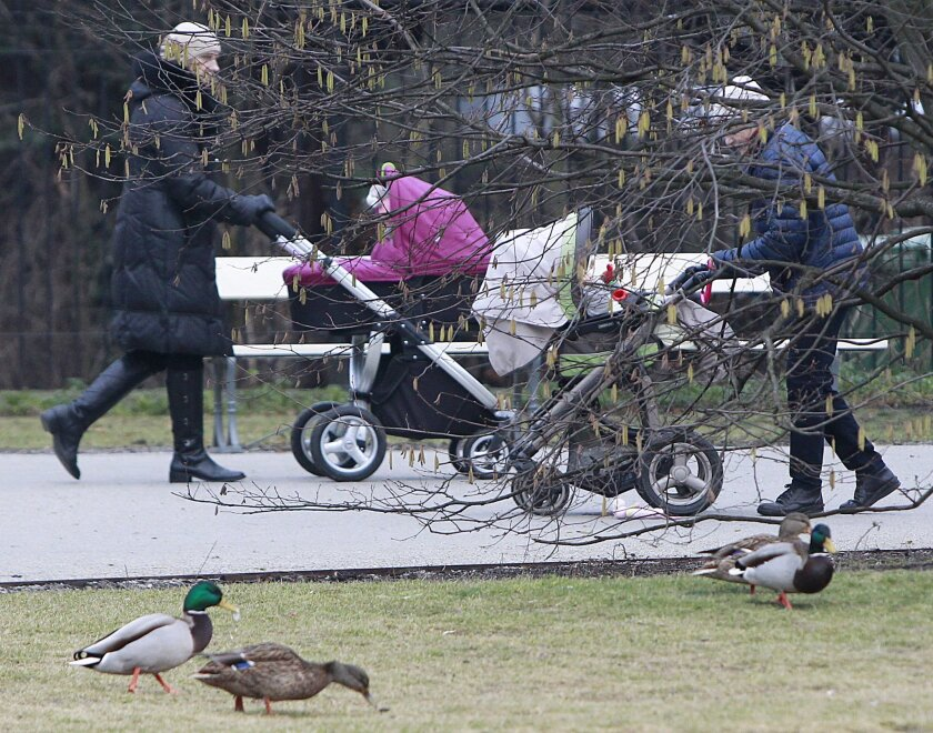 Mothers push their children in strollers in the park Ujazdowski in Warsaw, Poland, Thursday, Feb. 11, 2016. Polish lawmakers passed a new child benefit scheme Thursday under which the government will make monthly payments of 500 zlotys ($125) for all second and subsequent children in a family. The