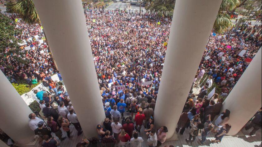 Rally for Gun Reform