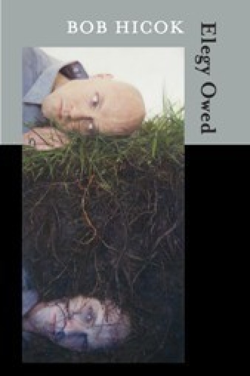 """Bob Hicok's new collection of poetry is """"Elegy Owed."""""""