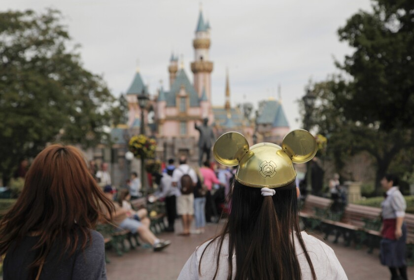 A measles outbreak that spread at Disneyland has brought an anti-vaccine book into the spotlight.