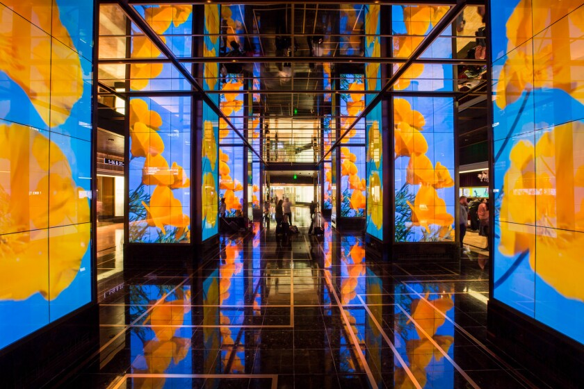 """The lobby of the Cosmopolitan of Las Vegas features two digital artworks: """"Imagine Peace"""" by Yoko Ono and """"The Pollinators"""" (shown here) by Los Angeles multimedia artist Sarah Rara."""