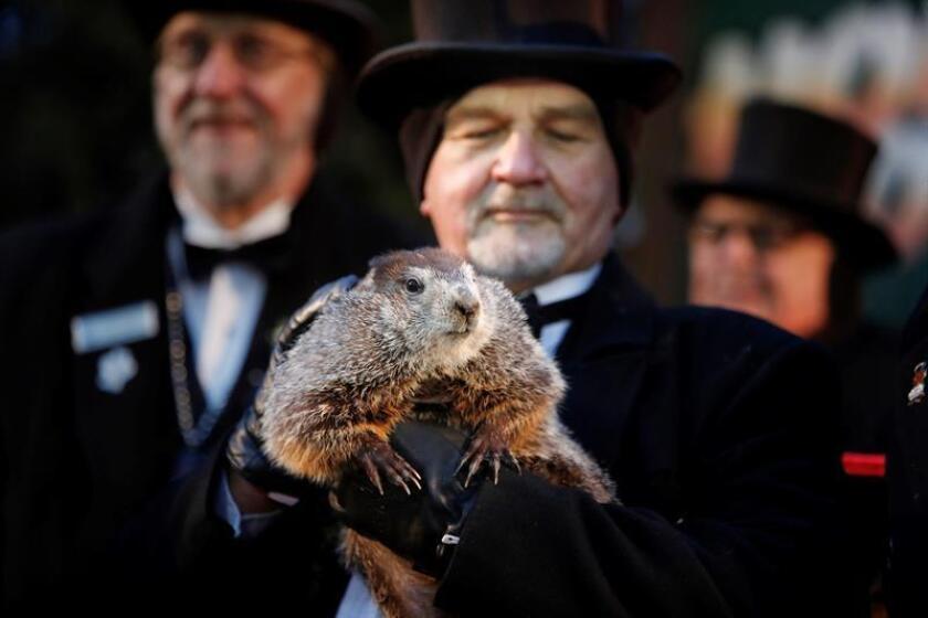 El cuidador John Grifiths (d), del Club de la Marmota, sostiene a la marmota Phil. EFE/Archivo