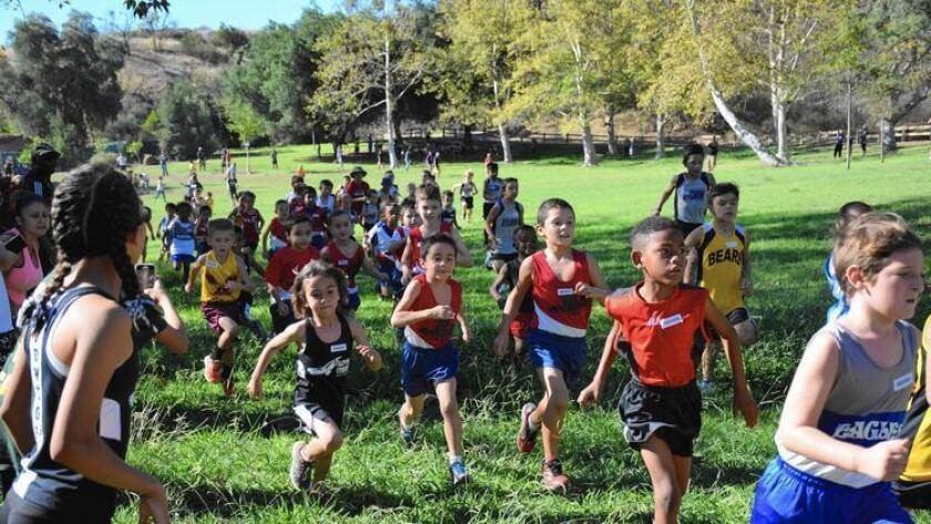 Park cross country runners