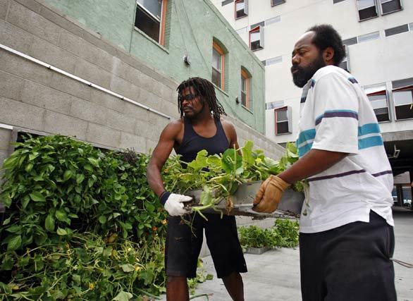 Garden club member and Rainbow Apartments tenants Chris Owens, left, and Lance Shaw help assemble a 104-square-foot, 6-foot-tall edible green wall in downtown Los Angeles. The garden wall was part of Urban Farming's Food Chain project, in which four edible walls are being planted downtown this week. Other locations include the Miguel Contreras Learning Center and the Weingart Center.