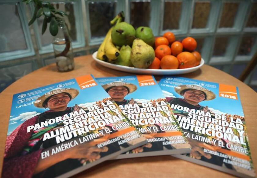 A view of several copies of a report by the UN Food and Agriculture Organization (FAO) on hunger and nutrition in Latin America and the Caribbean, Santiago, Chile, Nov. 7, 2018. EPA-EFE/Alberto Valdes