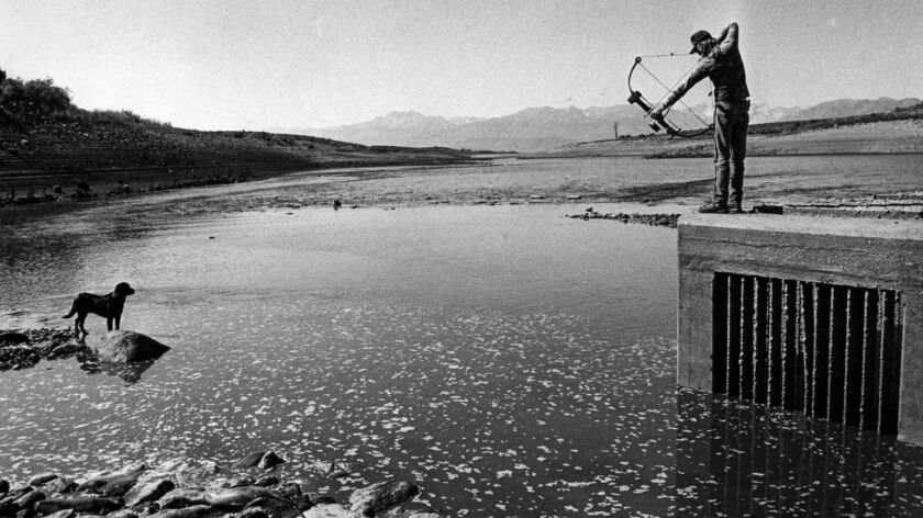 Sep. 1, 1988: Bow and arrow fisherman Jim Reed fishes for carp from the Bridgeport Reservoir drain t