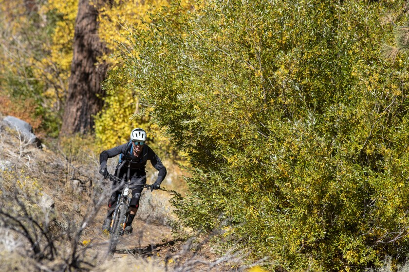 A mountain biker descends a trail in Lower Rock Creek Canyon near Mammoth Lakes.
