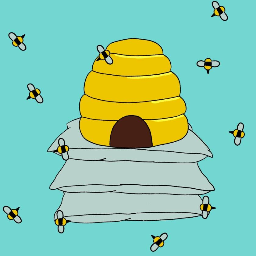 Slovenian bee sleeping method.
