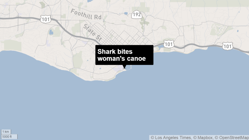 A woman reported that her canoe was bitten by a 6-foot shark several miles off of Santa Barbara Harbor.
