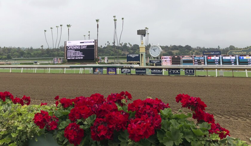 Flowers frame a new infield video board
