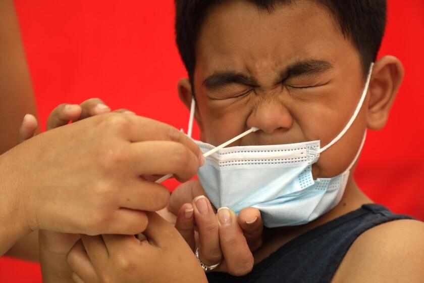 6-year-old boy gets a nasal swab coronavirus test at school.