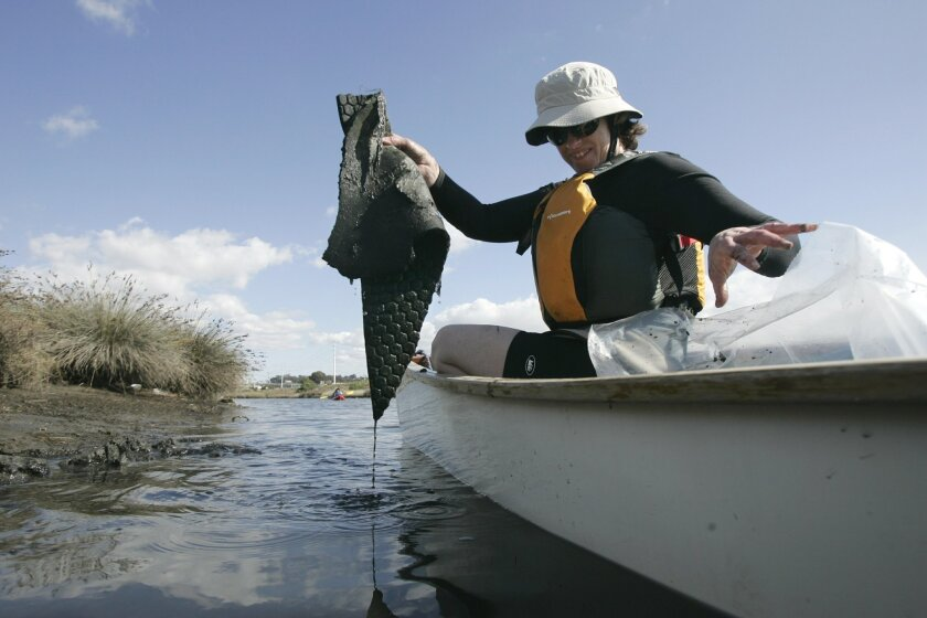 A volunteer of the San Diego River Park Foundation helps with wetlands clean-up at Mission Bay. The foundation is focusing its clean-up efforts on Mission Valley on Saturday.