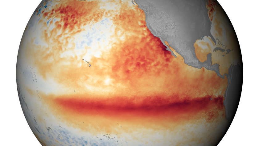 A satellite image shows the sea surface temperature in October, with the orange-red colors indicating above-normal temperatures that are indicative of El Niño.