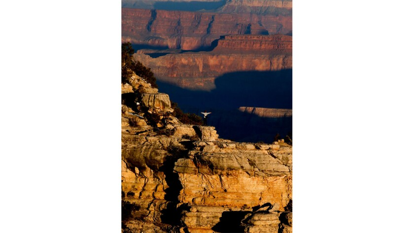 Early morning light is the key to capturing good photos of the Grand Canyon.