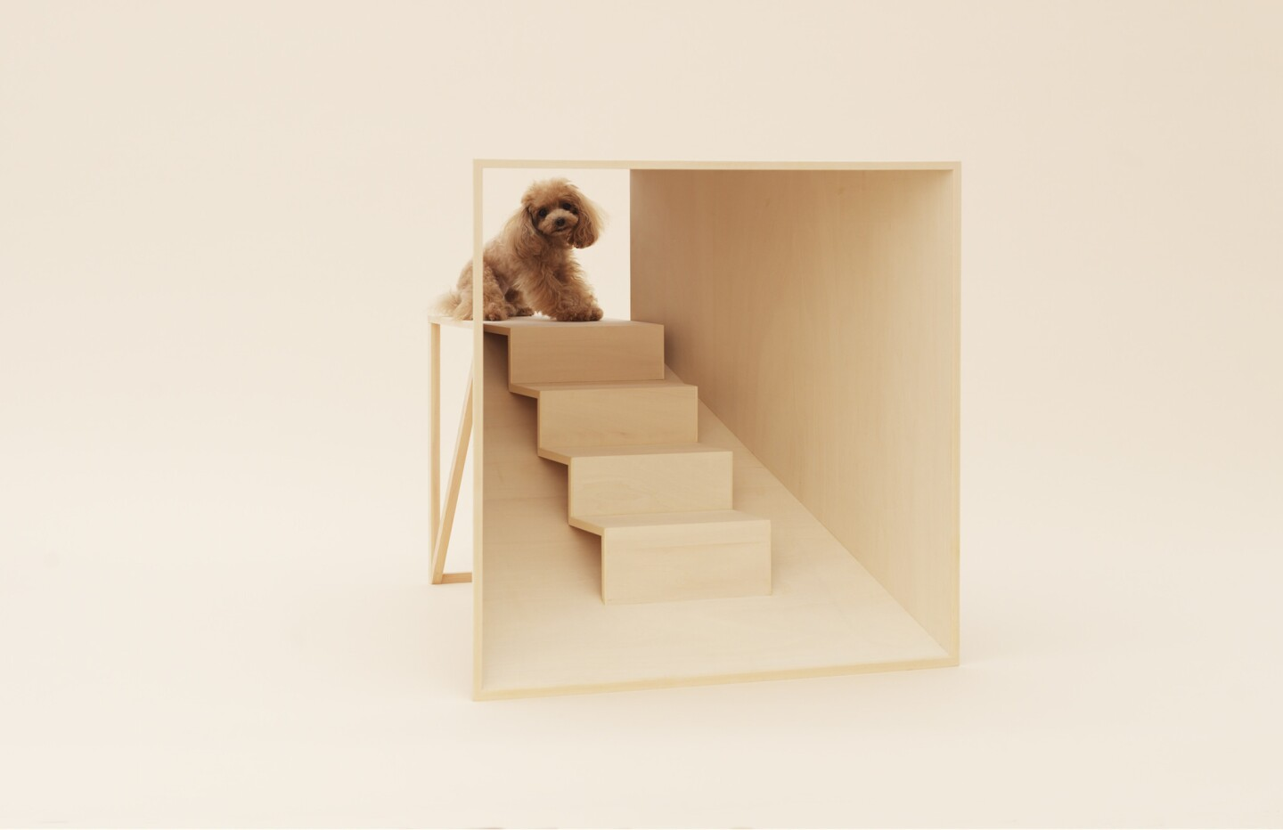 """Kenya Hara's """"D-Tunnel,"""" designed for """"bringing dogs and humans eye to eye."""""""