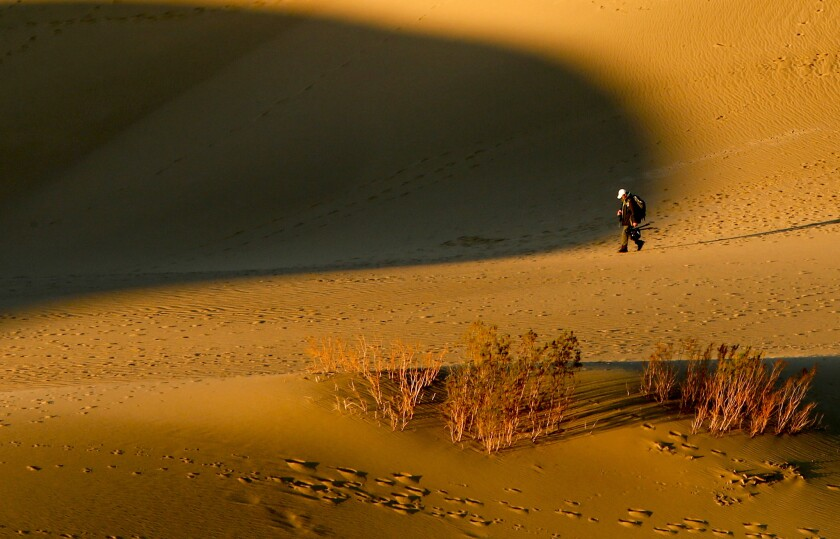 Bathed in early morning light, a photographer crosses Mesquite Flat Dunes in Death Valley National Park.