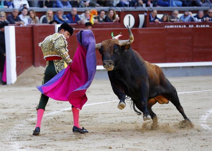En la imagen, mexicano Sergio Flores. EFE/Archivo