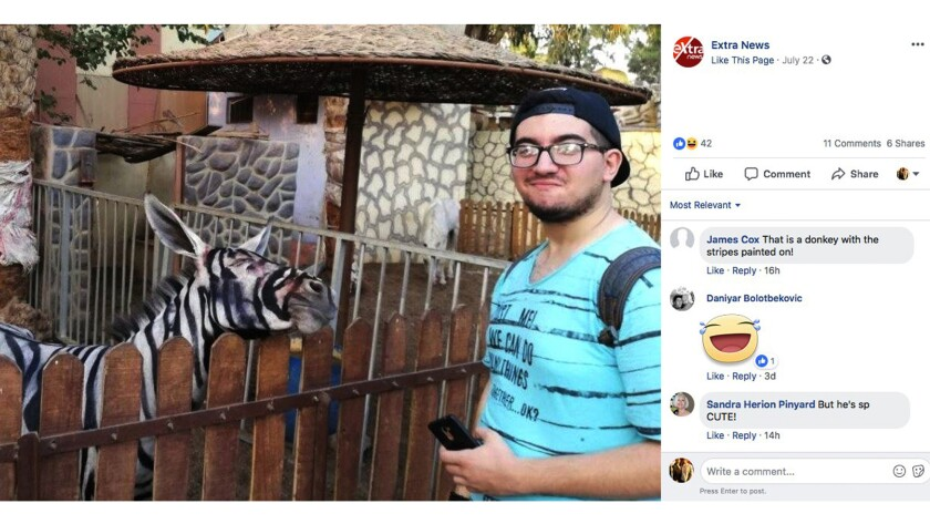 Mahmoud Sarhan, 18, posted this image on Facebook after his trip to Cairo's International Garden.