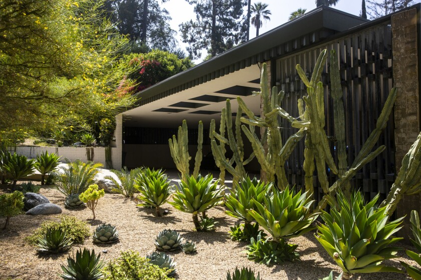 A new frought-friendly garden for their new Mid-century Modern home