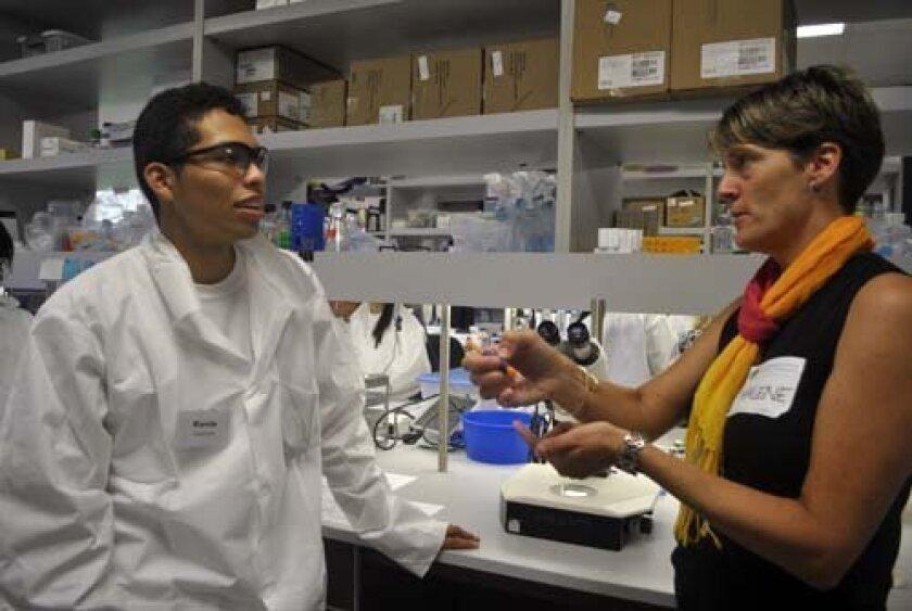 Preuss School student Kevin Vaquera discusses genetic mutations with Marlene Hansen during a visit to her lab at the Sanford-Burnham Institute. Photo: Elizabeth Schneider