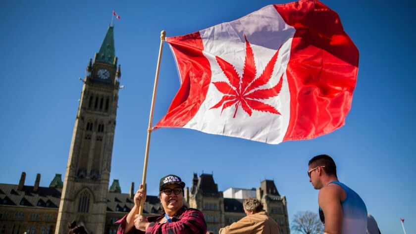 A woman waves a modified Canadian flag bearing a marijuana leaf during observance of National Marijuana Day — April 20 — outside Parliament in Ottawa in 2016.