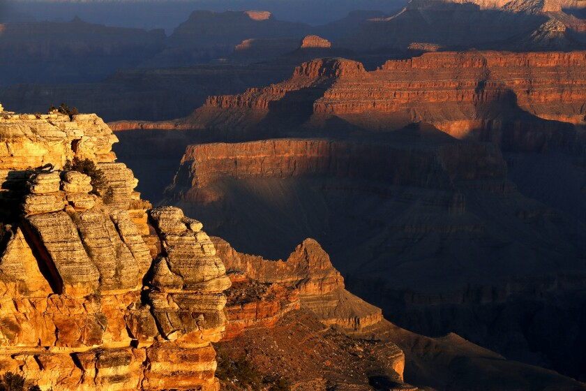 Sunrise paints the Grand Canyon with swaths of golden light.