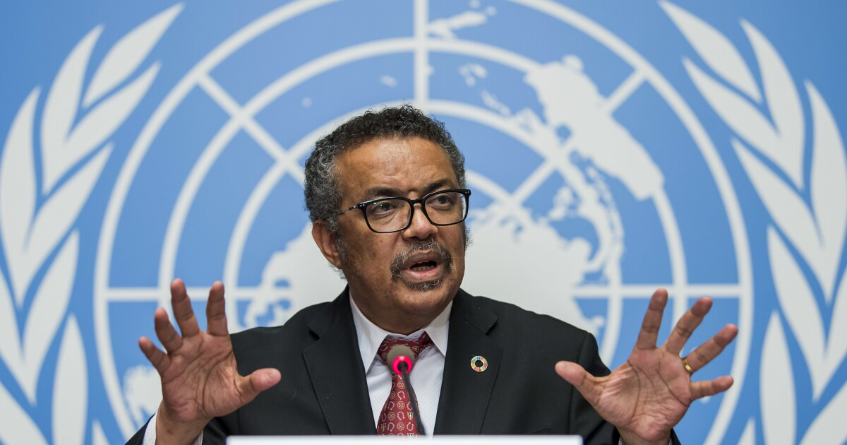 U.N. sets summit in December to push action on COVID-19 pandemic