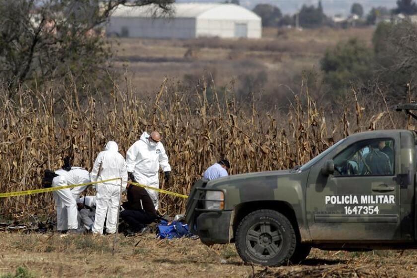 Expertos canadienses trabajan en la zona en la que se desplomo una aeronave el pasado 24 de diciembre, en el municipio de Coronango, Puebla (México). EFE/Archivo