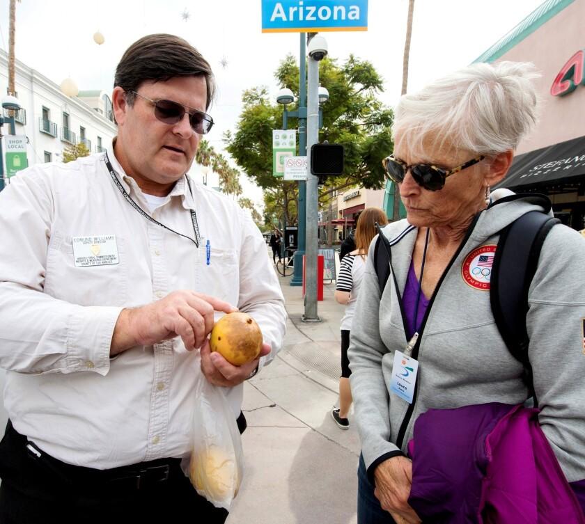 Farmers market sleuth Ed Williams points out clues on a suspicious mango to Santa Monica farmers market supervisor Laura Avery.