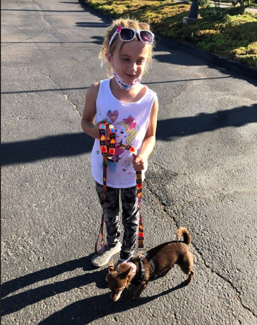 Six-year-old Kaia Pressler walking her favorite Frosted Faces Foundation senior fido, Coffee.