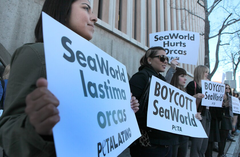 Demonstrators stand outside the courthouse in Pasadena on Feb. 3 as they voice support for 16 people arrested in connection with a protest against SeaWorld's float in the Tournament of Roses Parade.