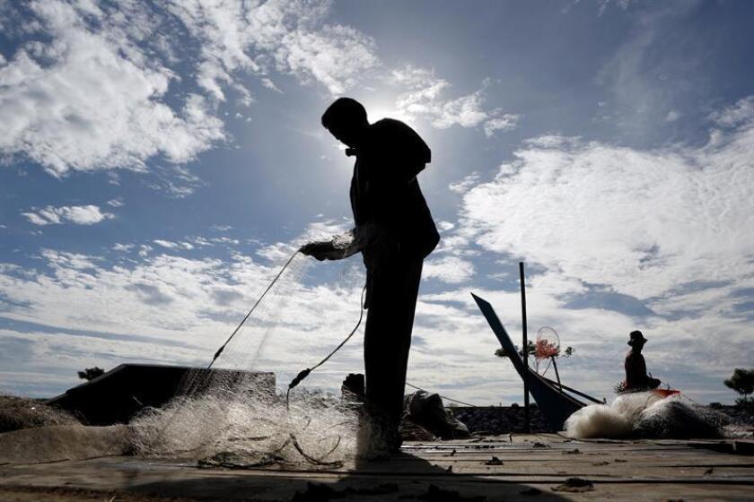 El gobernador de Puerto Rico, Ricardo Rosselló, anunció hoy la asignación federal de 11 millones de dólares destinados a la industria pesquera de la isla. EFE/ARCHIVO