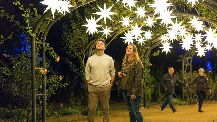 Look up at the Starlight Garden at Descanso Gardens' Enchanted: Forest of Light. (Cal Bingham)
