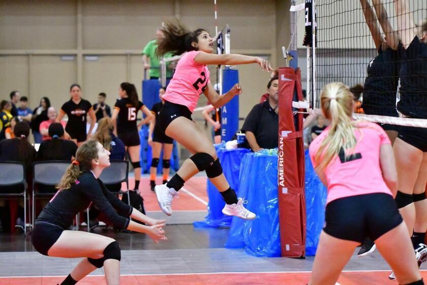 La Jolla Volleyball club player Tara Samimi (No. 24) spikes the ball in Arizona, with teammates Abby Espinoza and Maya Jessee.