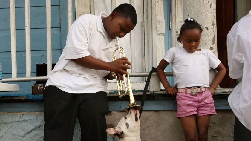 MN.0428.nola.39.CMC...NEW ORLEANS, LA--Darvell Ross, age 13, blows his horn ino the face of his dog