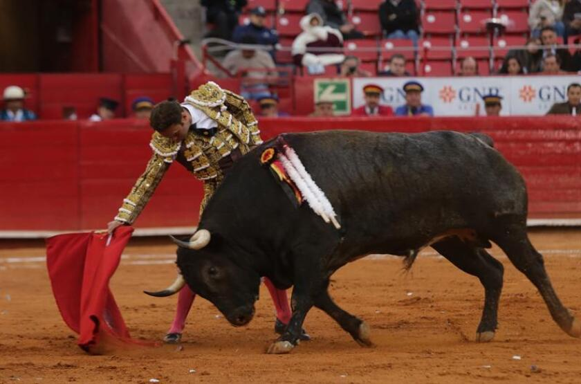 El diestro español Antonio Ferrera, lidia a su toro Luna Llena de 536 kg. durante la decimotercera corrida de la temporada grande en la Plaza de Toros México, en Ciudad de México (México). EFE