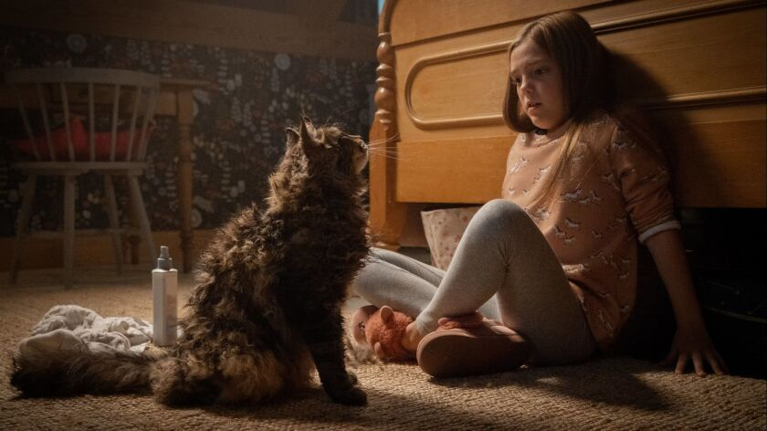 Jet? Laurence as Ellie in PET SEMATARY, from Paramount Pictures. Credit: Kerry Hayes/Paramount Pict