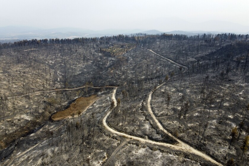 A burnt forest in Agia Anna village on Evia island, about 181 kilometers (113 miles) north of Athens, Greece, Wednesday, Aug. 11, 2021. Hundreds of firefighters from across Europe and the Middle East worked alongside Greek colleagues in rugged terrain Wednesday to contain flareups of the huge wildfires that ravaged Greece's forests for a week, destroying homes and forcing evacuations. (AP Photo/Michael Varaklas)